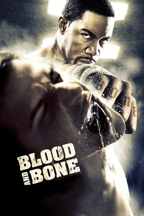 Movie poster of Blood and Bone