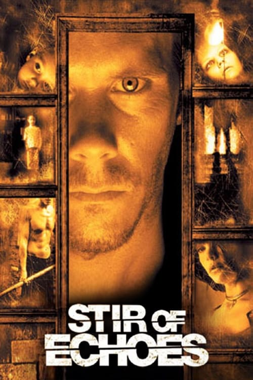 Movie poster of Stir of Echoes