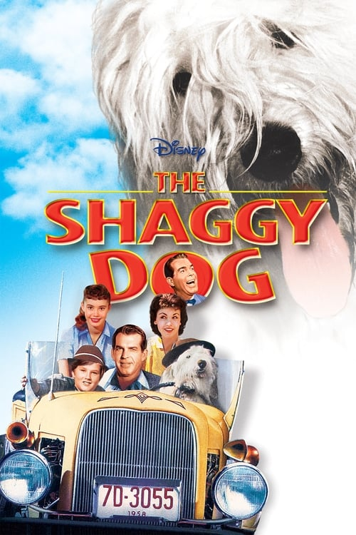 Movie poster of The Shaggy Dog