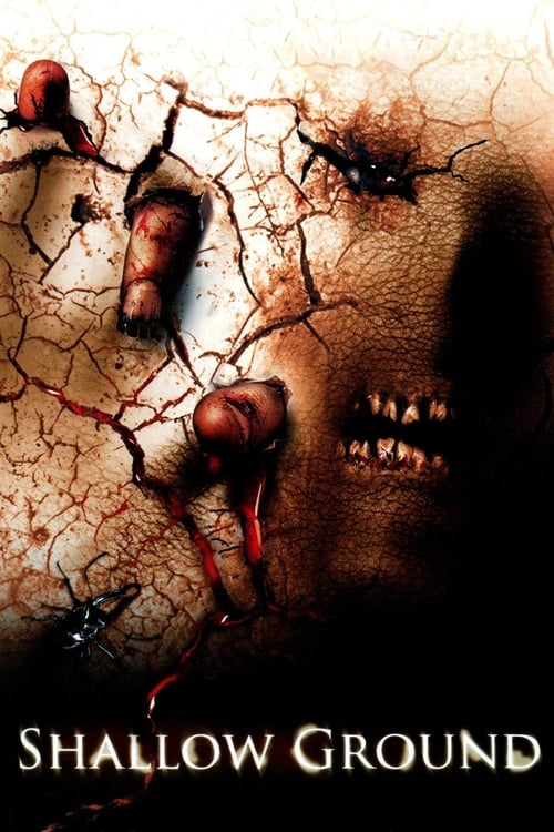 Movie poster of Shallow Ground
