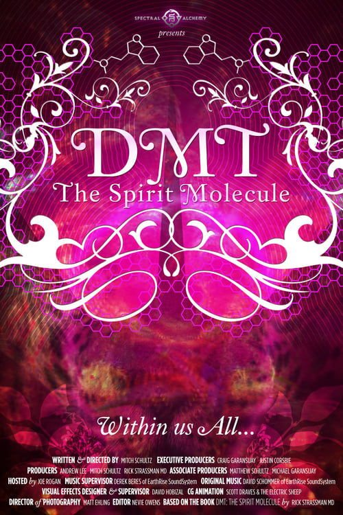 Movie poster of DMT: The Spirit Molecule