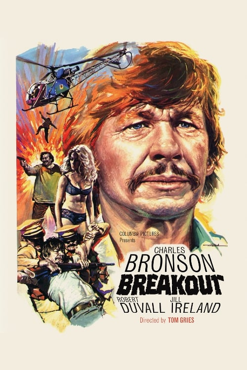 Movie poster of Breakout