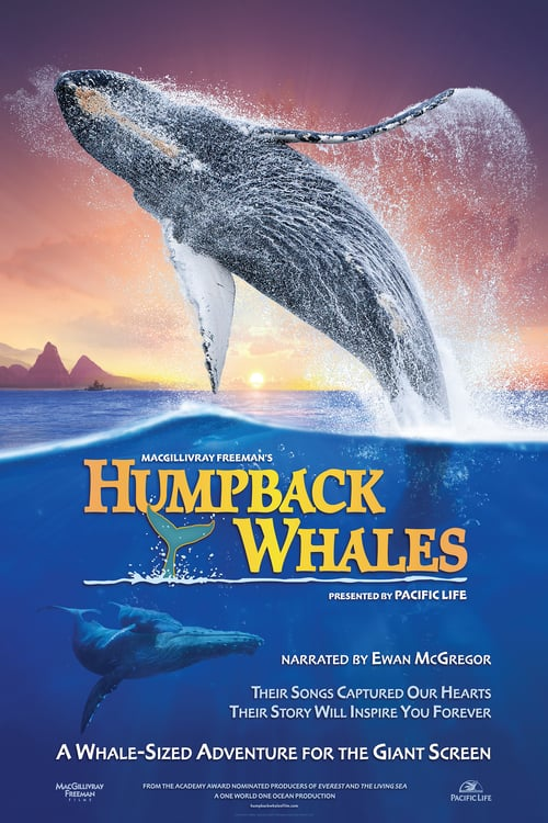 Movie poster of Humpback Whales