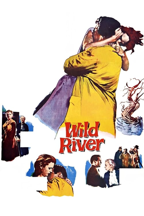 Movie poster of Wild River