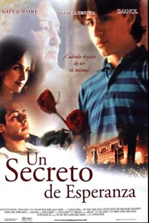 Movie poster of A Beautiful Secret