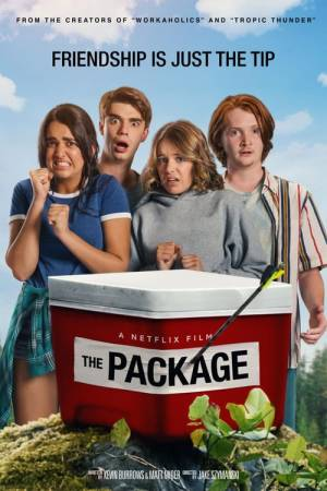 Movie poster of The Package