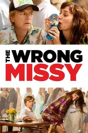 Movie poster of The Wrong Missy