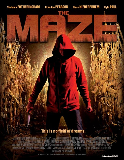 Movie poster of The Maze