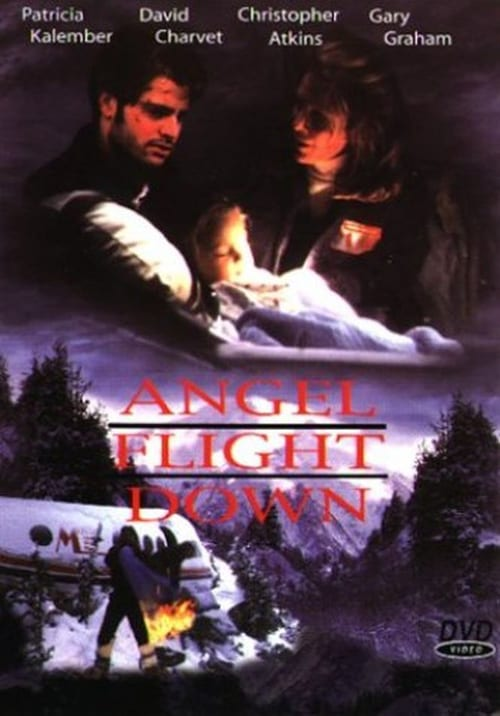 Movie poster of Angel Flight Down