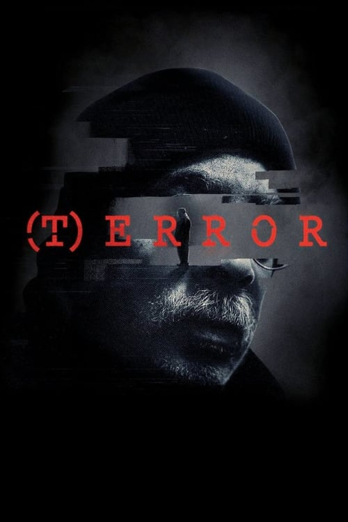 Movie poster of (T)ERROR